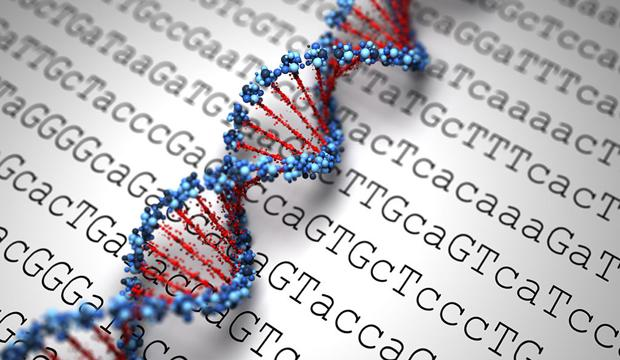 The study demonstrates, in fact, that the tiny transformation of DNA has a tremendous impact on tumors